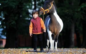 "Shetlend pony ""Chocolate Prince"" and Alexandra"